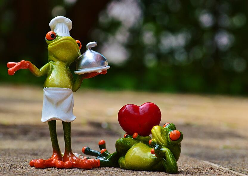 frog_cooking_love_valentine_s_day_eat_kitchen_gourmet_food-697222