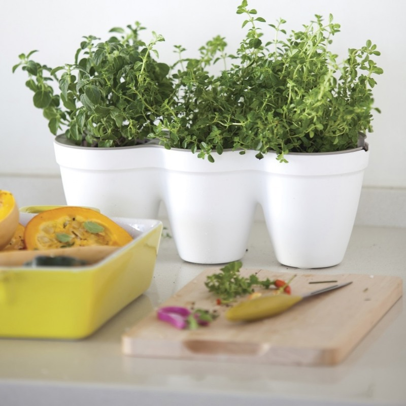 ghiveci-triplu-alb-keter-ivy-herbs-25-l (1)